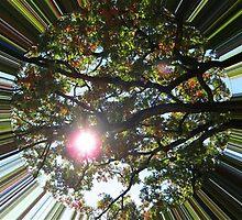 WeatherDon2.com Art 287 by dge357