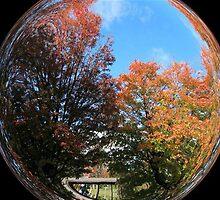 WeatherDon2.com Art 293 by dge357