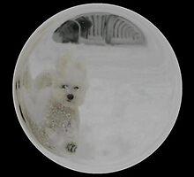 Cindy's Snow Globe's 3 by dge357