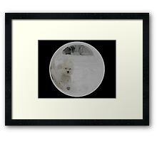 Cindy's Snow Globe's 3 Framed Print