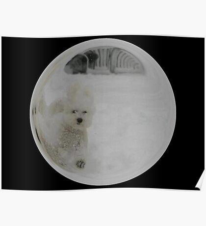 Cindy's Snow Globe's 3 Poster