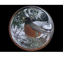 Cindy's Snow Globe's 5 Photographic Print
