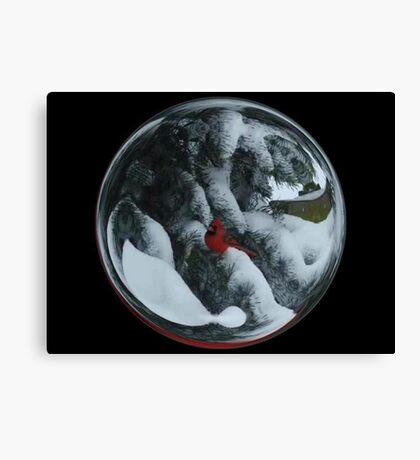 Cindy's Snow Globe's 6 Canvas Print