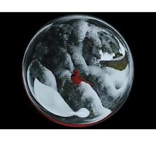 Cindy's Snow Globe's 6 Photographic Print