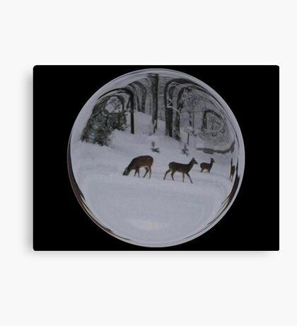Cindy's Snow Globe's 8 Canvas Print