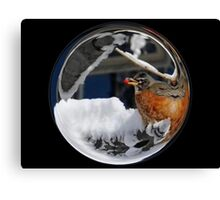 Cindy's Snow Globe's 10 Canvas Print