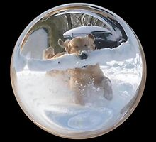 Cindy's Snow Globe's 12 by dge357