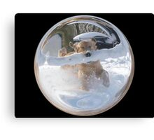 Cindy's Snow Globe's 12 Canvas Print