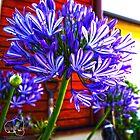 Flower Power by MzLexy