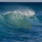 Indian Ocean Wave by Jill Fisher