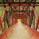 Rusty Bridge by Inge Johnsson