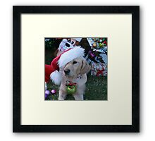 Golden Retriever with droopy Christmas Hat Framed Print