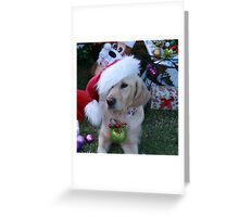 Golden Retriever with droopy Christmas Hat Greeting Card
