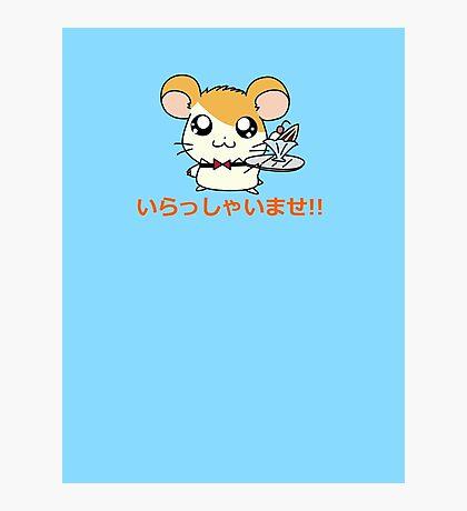 Hamster Waiter Photographic Print
