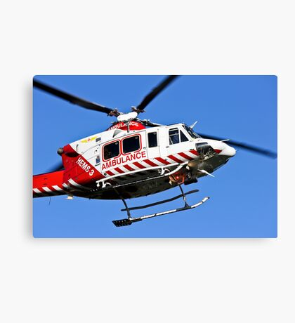 To the rescue. Canvas Print