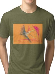 this is titled 'The boat' Tri-blend T-Shirt