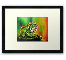 Nature's Rainbow Framed Print
