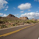 Along the Apache Trail by Regenia Brabham