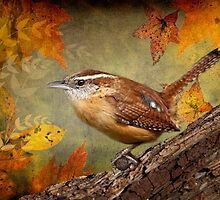 Wren in Autumn by Bonnie T.  Barry