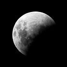 Lunar Eclipse 2011 by Adam Spence