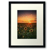 Light Of The Plains Framed Print