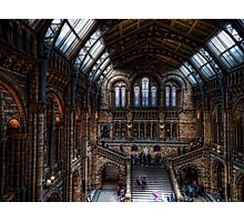 The Natural History Museum Photographic Print