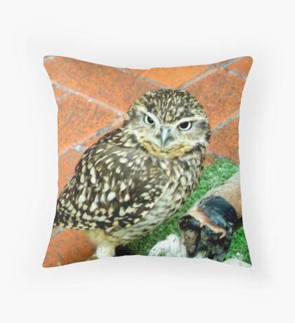 Baby Owl Throw Pillow