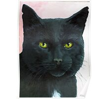 Brambles - Black Cat Oil Painting Portrait Poster