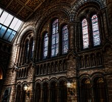 Stained Glass Windows at the NHM by Alan E Taylor