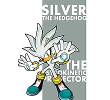 Silver The Hedgehog Photographic Print