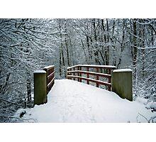 Bridge between white worlds Photographic Print