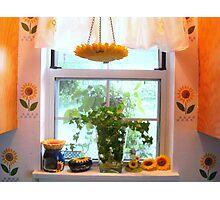 Kitchen windowsill  ^ Photographic Print