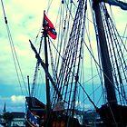 Pirates! by Jennifer Jorgensen