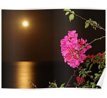 The coloured Bougainvilleas, the Pacific Ocean and the full Moon - Las Buganvillas de colores, el Oceano Pacifico y la Luna llena Poster