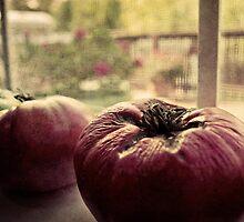 Forgotten tomatoes by finina