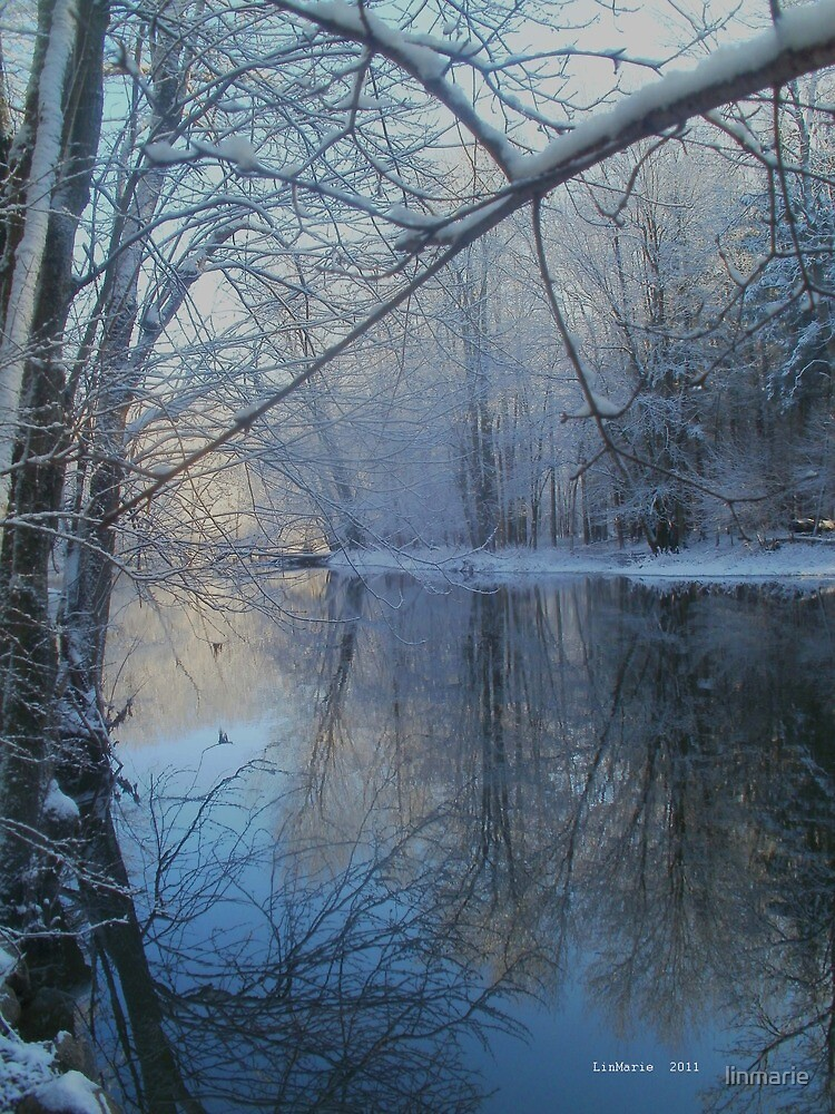 December Tenth, Two Thousand and Eleven ~ VII~ by linmarie