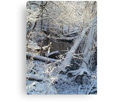 December Tenth, Two Thousand and Eleven ~ IX~ Canvas Print
