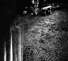 holga by Giulio Gonella
