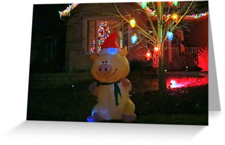 """Happy Pig"" Christmas Decorations by kkphoto1"