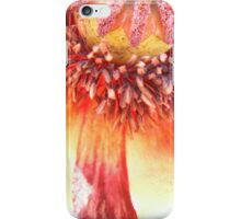 Poppy 2 iPhone Case/Skin