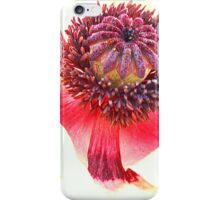 Poppy 3 iPhone Case/Skin