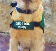 """""""Guide Dog Puppy"""" by kcd-designs"""