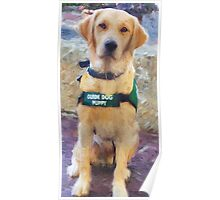 """""""Guide Dog Puppy"""" Poster"""