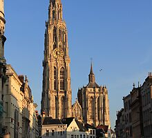 Sun and City light - Antwerp by Gilberte
