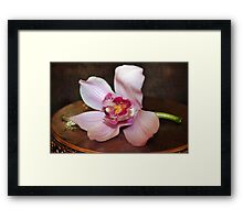 Purple orchid flower at small vintage table Framed Print