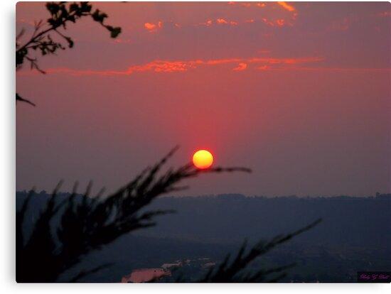 Red Sun by Brenda Dahl