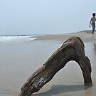 Piece of drift wood on empty beach with couple walking away on backoundgr by Anton Oparin