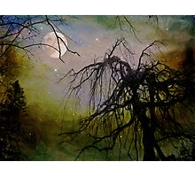By The Light of The Silvery Moon II  Photographic Print