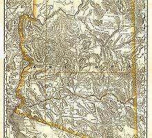 Vintage Map of Arizona (1876) by BravuraMedia