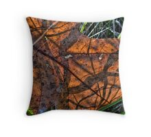 Leaf Shadow Study Throw Pillow